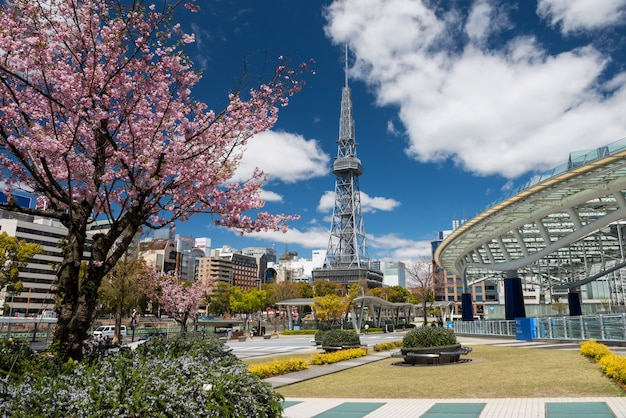 Oasis21 and tv tower with sakura blossom, nagoya