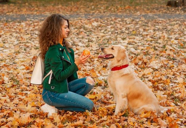 彼の所有者が足のコマンドを練習している従順なゴールデンレトリバー犬