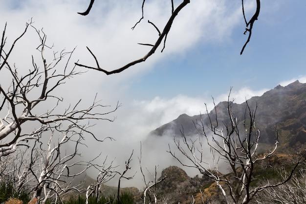 Неизвестные горы