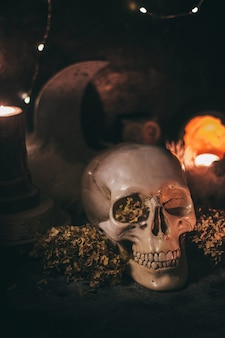 Occult mystic ritual halloween witchcraft scene
