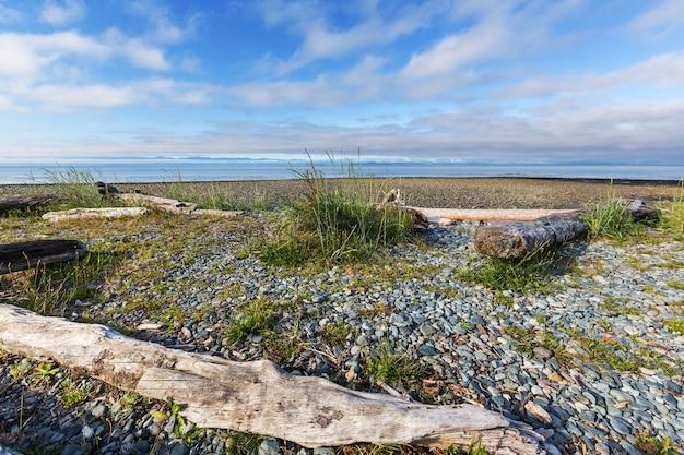 Океанский пляж на острове ванкувер, британская колумбия, канада