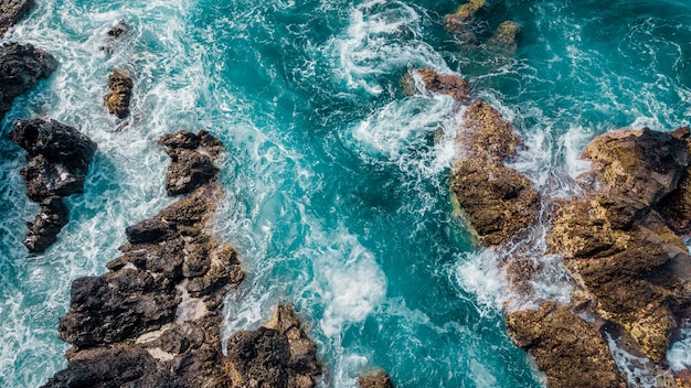Ocean coastline landscape