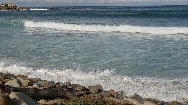파도와 바위, 캘리포니아, 미국. big sur 근처 17 마일 드라이브. 바다 물이 튀는.