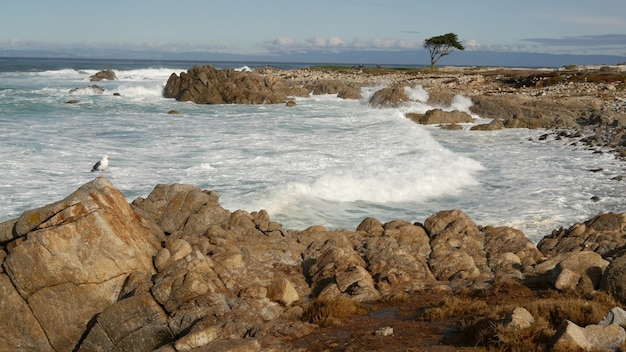 바다 파도와 바위, 몬터레이, 북부 캘리포니아, 미국. 퍼시픽 코스트 하이웨이(pacific coast highway)의 해변 골프 관광 리조트인 빅 서(big sur) 근처에서 17마일 드라이브. 튀는 물, 페블 비치의 바닷바람. 사이프러스 나무.