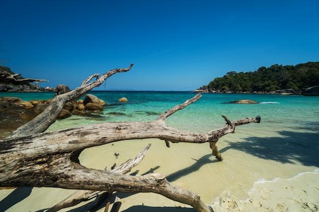 Ocean waves, beautiful tropical beach and rocky coastline and beautiful forest. nga khin nyo gyee island myanmar. tropical seas and islands in southern myanmar