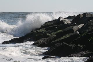 Onde del mare, le onde