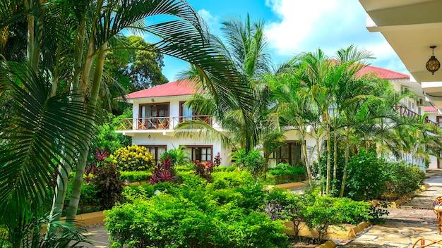緑のヤシの木に囲まれたオーシャンフロントの別荘休暇夏の旅行のコンセプト