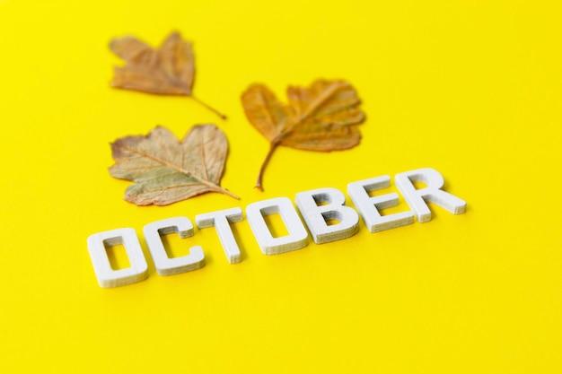 10月、紅葉のある秋の月。