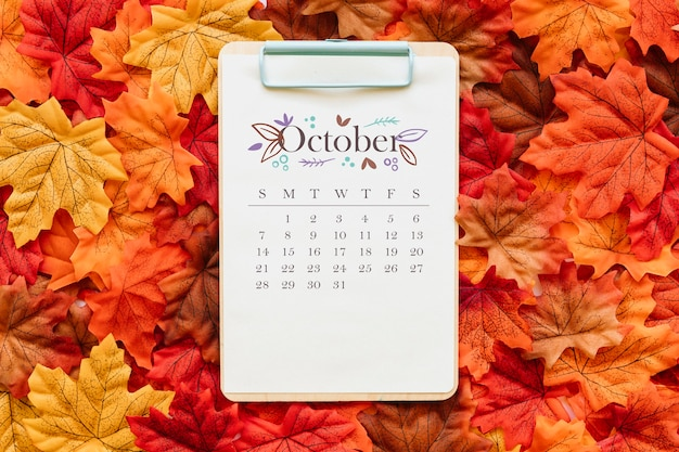 October calendar on autumn leaves
