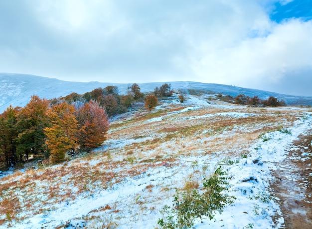 Октябрьское карпатское горное плато с первым зимним снегом и осенними разноцветными деревьями