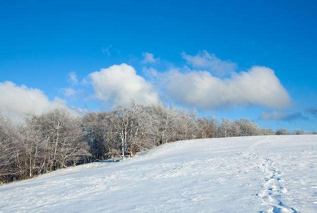 Октябрьская опушка букового леса и первый зимний снег
