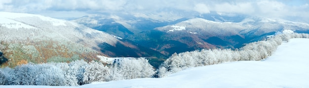Опушка октябрьского горного букового леса с первым зимним снегом и разноцветной листвой прошлой осени на дальнем склоне горы. изображение сшивается тремя кадрами.