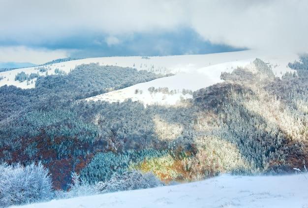 Октябрьская опушка букового леса с первым зимним снегом и прошлой осенью разноцветной листвой на склоне горы (начало ненастной ветреной погоды)