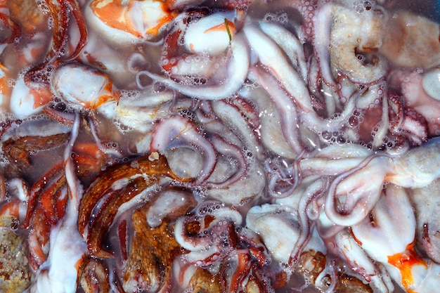 Octopus catch from mediterranean sea