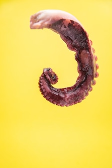 タコの爪シーフード海の爬虫類テーブルのコピースペースで食事スナックを食べる準備ができている新鮮な部分