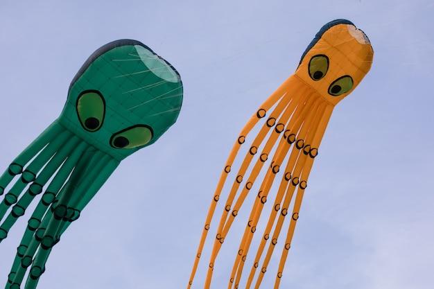 空に浮かぶタコの形をした凧。凧まつり。希釈の概念。