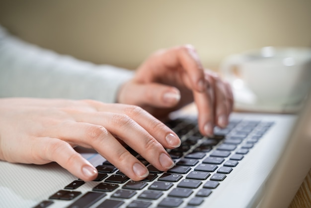 Office woman's hands are typing