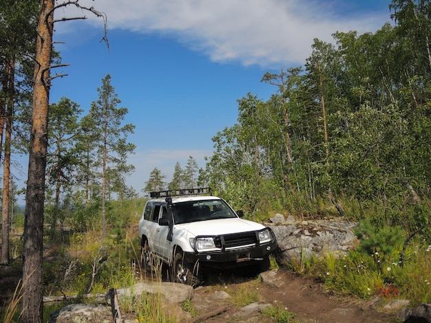 Offroad adventure on toyota in the forests of karelia