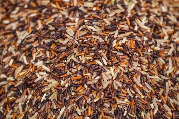 Oganic brown rice or riceberry healthy food source of fiber and high vitamin nutrition from thailand