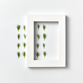 Ограничный травяной узор из веточек хвои и прямоугольной рамки на светло-серой стене. место для текста. плоская планировка.