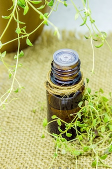 Oil with thyme extract. selective focus. nature.