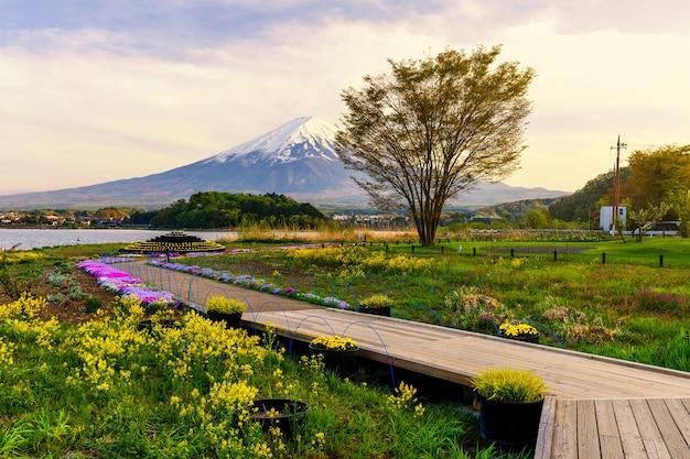 Oishi spring garden at dusk, kawaguchiko