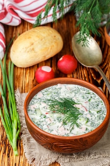 Okroshka, summer light cold yogurt soup