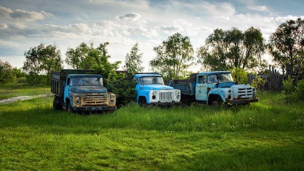 Old abandoned broken trucks on green grass