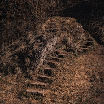 Old abandoned dilapidated stone steps in nature overgrown with moss near the mountain