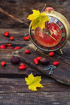 Old alarm clock in the autumn style