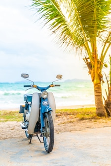 Old and classic bike with sea background