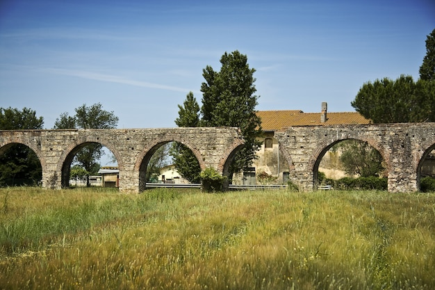 Old arch bridge on a grass field with trees and a building