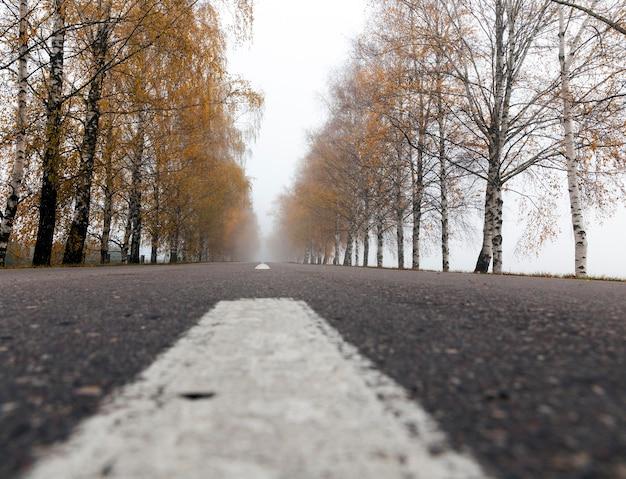 가 시즌에 오래 된 아스팔트 도로입니다. 도로에 보이는 흰색 표시.