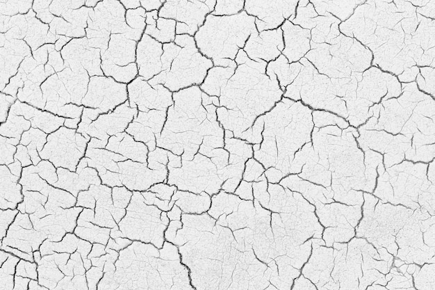 Old asphalt road surface of texture with cracked.
