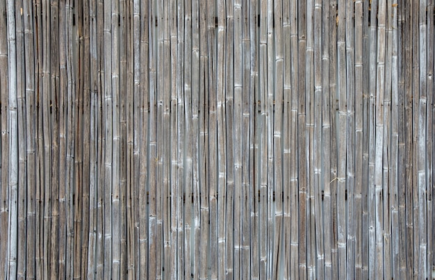 Old bamboo fence texture