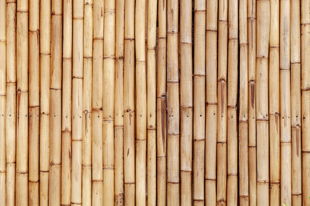 Old bamboo fence wall for nature background and web design
