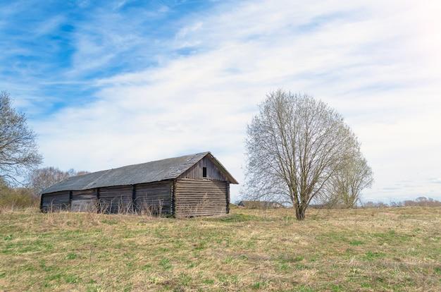 草地の古い納屋と木。