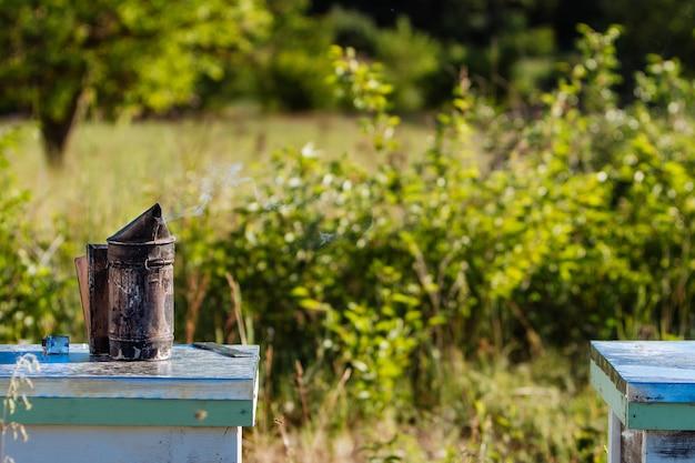 Старый курильщик пчел. инструмент пчеловодства. пчеловод осматривает улей.