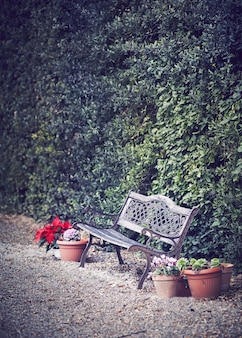 花に囲まれた古いベンチ
