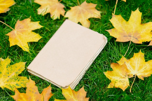 Old book on a grass with yellow maple leaves around.