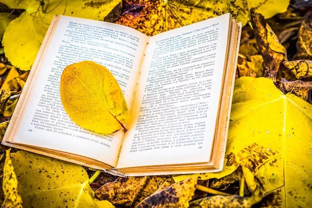 Старая книга в осенних листьях