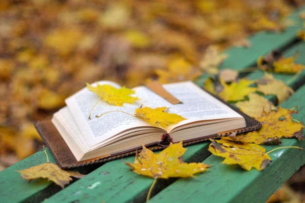 Старая книга лежит на скамейке с опавшими листьями в осеннем парке