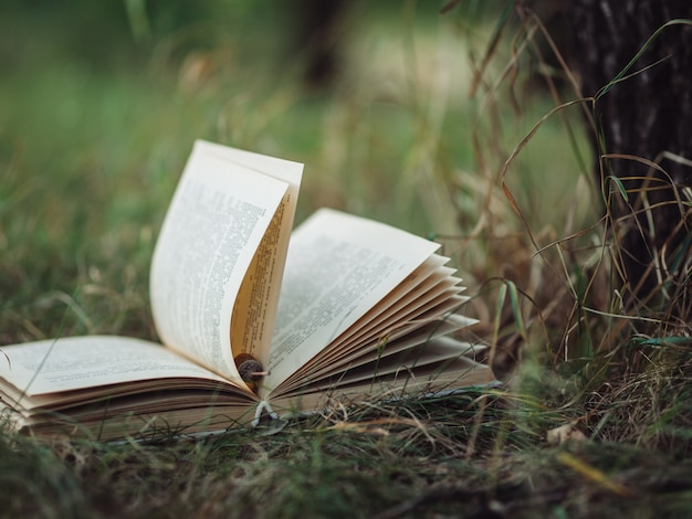 Old book lies on the grass in the park