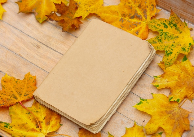 Old book on a table with yellow maple leaves around.