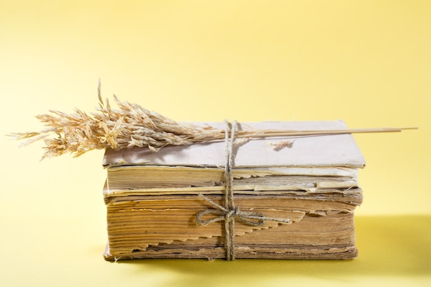 오래 된 책과 옥수수의 마른 귀는 노란색 테이블에 밧줄로 묶여 있습니다. 건강, 조화, 포용성. 공간 복사