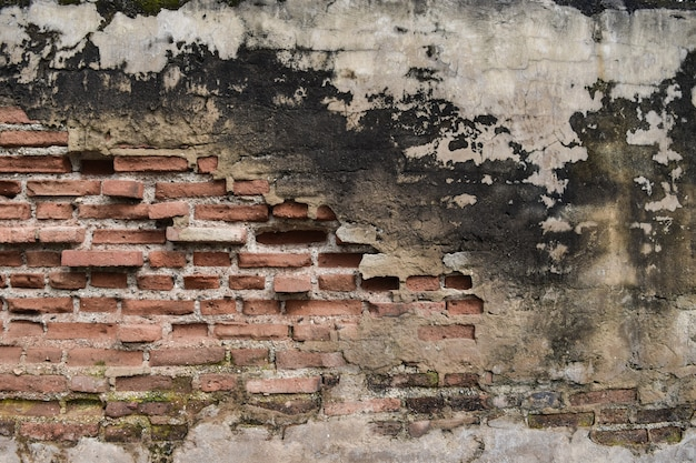 Old brick wall eroded.