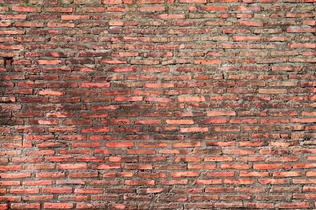Старая кирпичная стена для фона с мхом