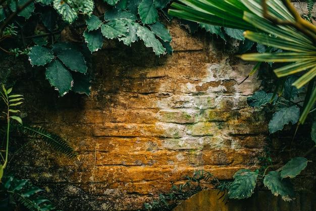 植物が生い茂った古いレンガの壁がクローズアップ