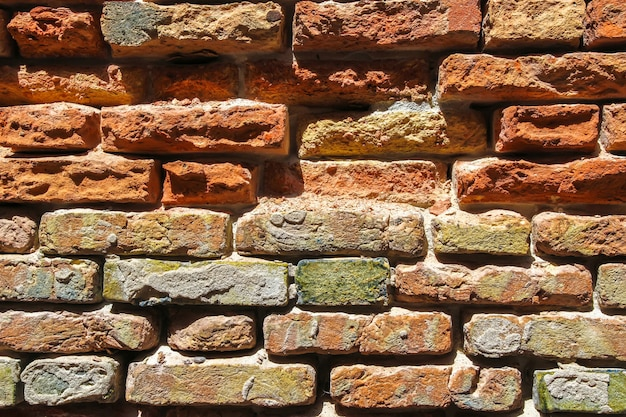 Old brick wall on a sunny day