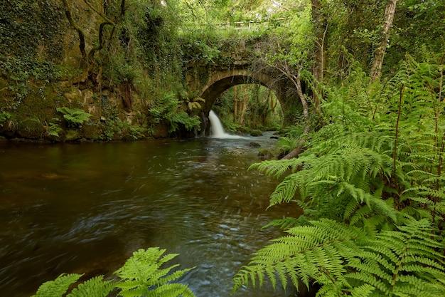 Старый мост через речку о пейлан, в районе галисии, испания.